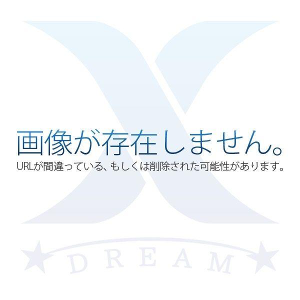 浜松市中区名塚町に新築住宅2棟!【新着情報6月11日】
