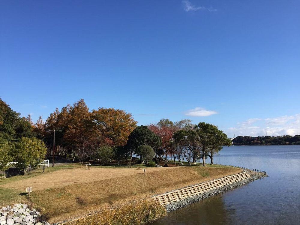 日本一幸せな街浜松市にある佐鳴湖、浜松市民の憩いの場です