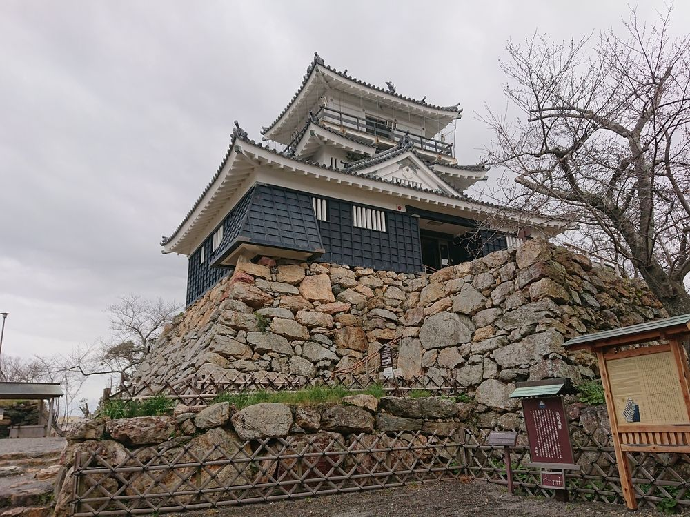 浜松城公園の桜の開花状況(3月27日)